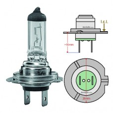 http://www.ledoauto.com/image/cache/catalog/Bulb size cover pictures/H7-HALOGEN-BULB-228x228.jpg